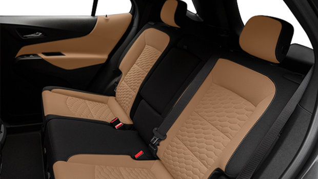 Jet Black/Cinnamon Premium Cloth