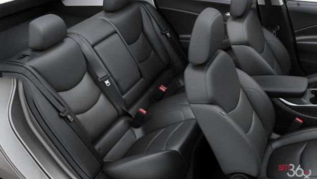 Jet Black Leather (HOY-A51)