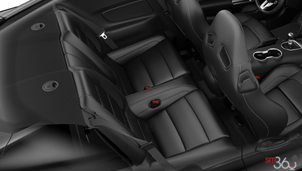 Ebony RECARO Premier Leather