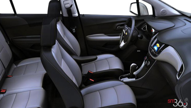 Jet Black/Light Ash Grey Bucket seats Leatherette (AEX-AR9)