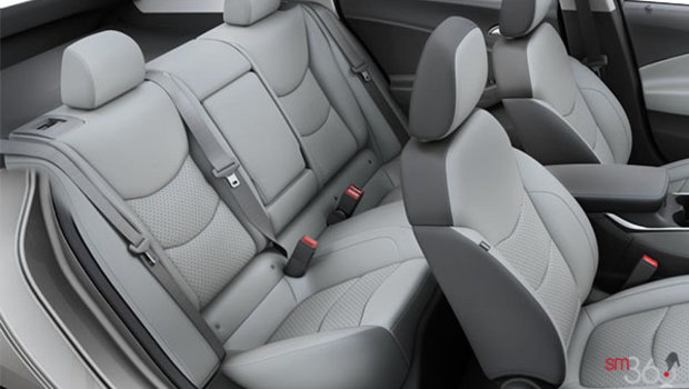 Bucket Seats - Leather Appointed - Light Ash/Dark Ash (A51-H82)