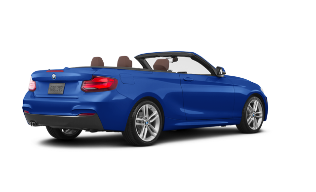 2019 BMW 2 Series Cabriolet 230i xDrive