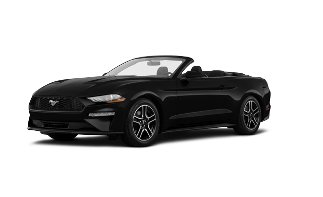 2019 Ford Mustang Convertible Ecoboost Premium Starting
