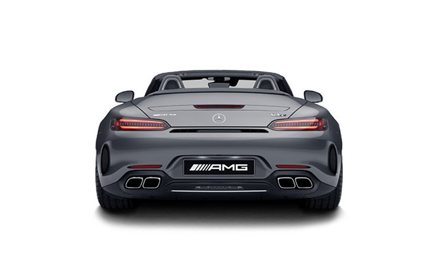 Mercedes-Benz AMG GT Roadster C 2020 - photo 1