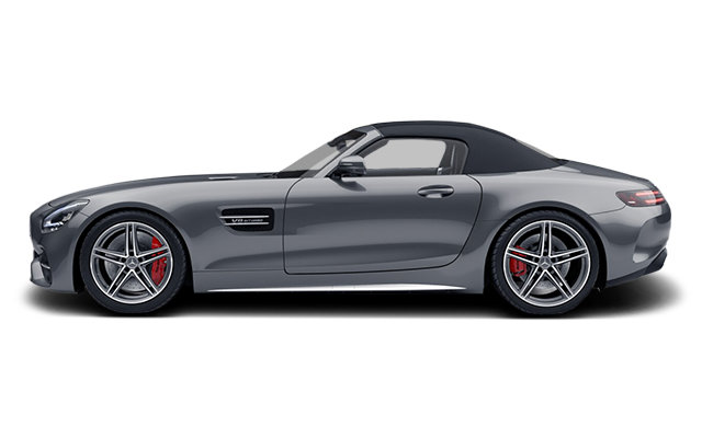 Mercedes-Benz AMG GT Roadster C 2020 - photo 3