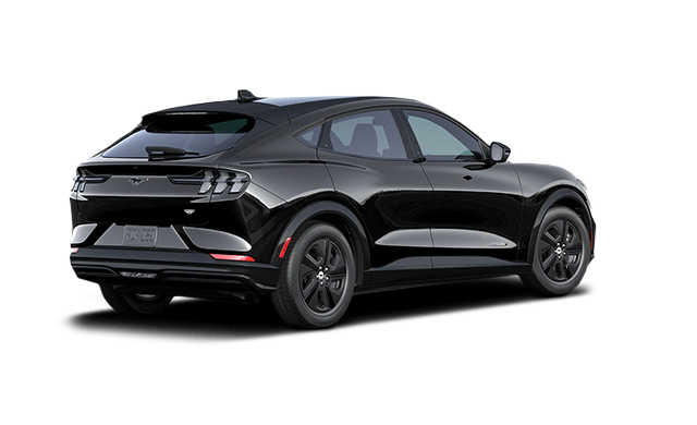2021 Ford Mustang Mach E Suv