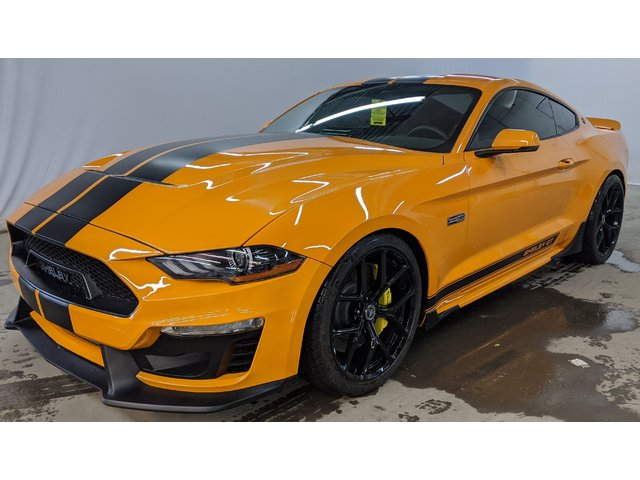 Ford Mustang SHELBY GT/SC 2019