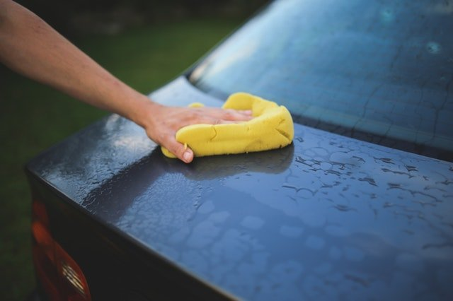 Keep Your Car Clean During Lovebug Season