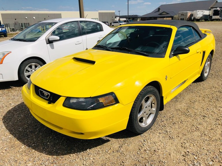2003 Ford Mustang CONVERTIBLE - LOW KMS