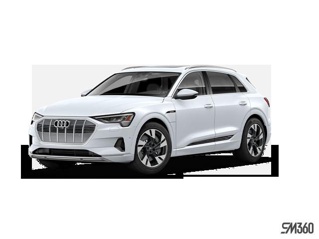 2019 Audi E-TRON Technik quattro
