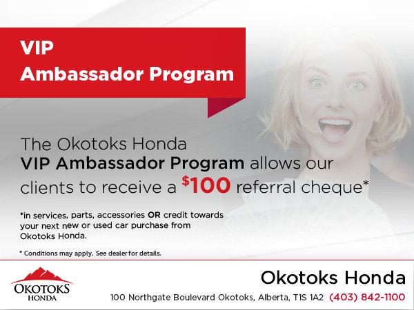 VIP Ambassador Program