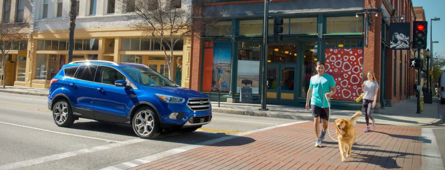 Spotlight: Ford Escape