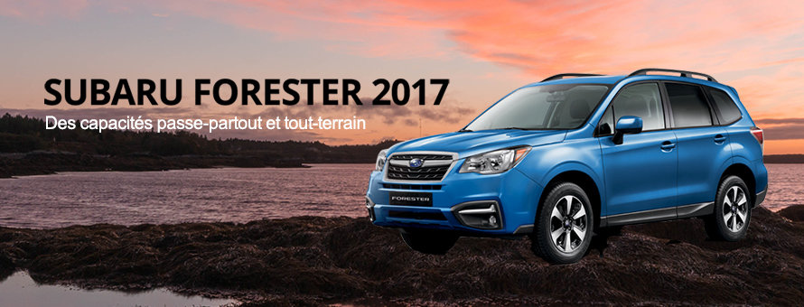 forester 2017 m
