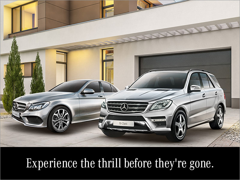 Experience the thrill before they're gone.