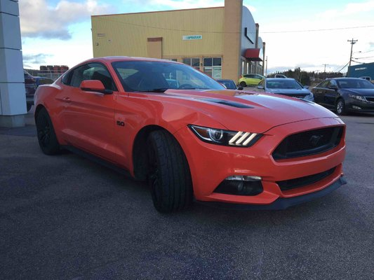Model{id=2379, name='Mustang', make=Make{id=562, name='Ford', carDealerGroupId=2, catalogMakeId=33}, organizationIds=[1, 2, 4, 5, 6, 7, 9, 10, 11, 12, 13, 14, 15, 16, 17, 18, 19, 20, 22, 23, 24, 30, 31, 32, 34, 35, 36, 37, 38, 39, 41, 43, 44, 45, 46, 47, 49, 51, 52, 53, 54, 57, 59, 61, 65, 67, 68, 70, 71, 72, 74, 81, 82, 84, 86, 87, 88, 89, 91, 92, 94, 95, 96, 97, 99, 100, 101, 102, 103, 105, 106, 107, 108, 109, 110, 112, 113, 114, 117, 118, 123, 125, 129, 130, 132, 135, 138, 144, 145, 149, 150, 152, 153, 155, 156, 158, 160, 162, 164, 166, 167, 169, 170, 173, 174, 175, 176, 177, 178, 180, 181, 182, 183, 184, 185, 186, 187, 189, 191, 192, 193, 197, 198, 200, 202, 203, 205, 207, 208, 209, 210, 213, 214, 216, 217, 218, 219, 220, 221, 222, 223, 224, 225, 226, 227, 229, 231, 233, 234, 235, 237, 241, 243, 244, 246, 247, 249, 253, 255, 258, 260, 261, 262, 263, 264, 269, 270, 272, 275, 276, 280, 283, 284, 288, 289, 293, 294, 295, 296, 297, 298, 300, 303, 304, 307, 311, 312, 314, 315, 318, 320, 322, 323, 324, 327, 332, 333, 336, 338, 340, 342, 343, 344, 345, 346, 347, 352, 353, 354, 355, 357, 363, 365, 367, 368, 372, 373, 374, 375, 376, 384, 386, 389, 394, 395, 397, 398, 399, 402, 403, 407, 410, 411, 414, 415, 420, 422, 425, 427, 429, 430, 434, 435, 437, 439, 441, 443, 445, 449, 458, 459, 464, 470, 483, 495, 496, 497, 498, 499, 517, 528, 530, 535, 544, 556, 568, 571, 577], catalogModelId=645}